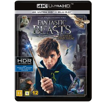 Fantastic Beasts and Where to Find Them (4K) billede