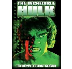 The Incredible Hulk - sæson 1 billede