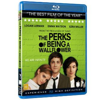 The Perks of Being a Wallflower billede